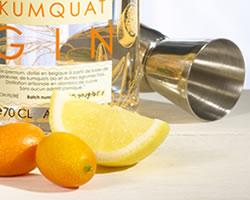 close-up-cocktail-cala-kumquat-gin-fizz