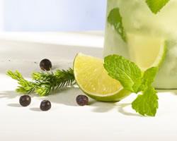 close-up-cocktail-cala-kumquat-gin-mentho