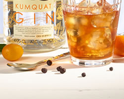 close-up-cocktail-cala-kumquat-gin-negroni-belge2